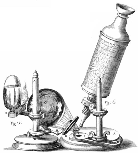 Raios-X, microscópios e um empurrão para as mudanças culturais