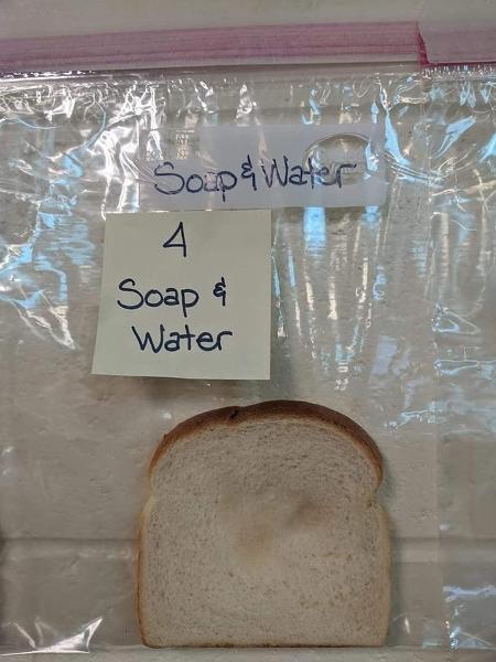 Imagem mostra uma fatia de pão de forma dentro de um saco plástico transparente que não apresenta nenhuma mancha de bolor mesmo semans após ser tocada por mãos lavadas com água e sabão.
